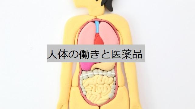 人体の働きと医薬品